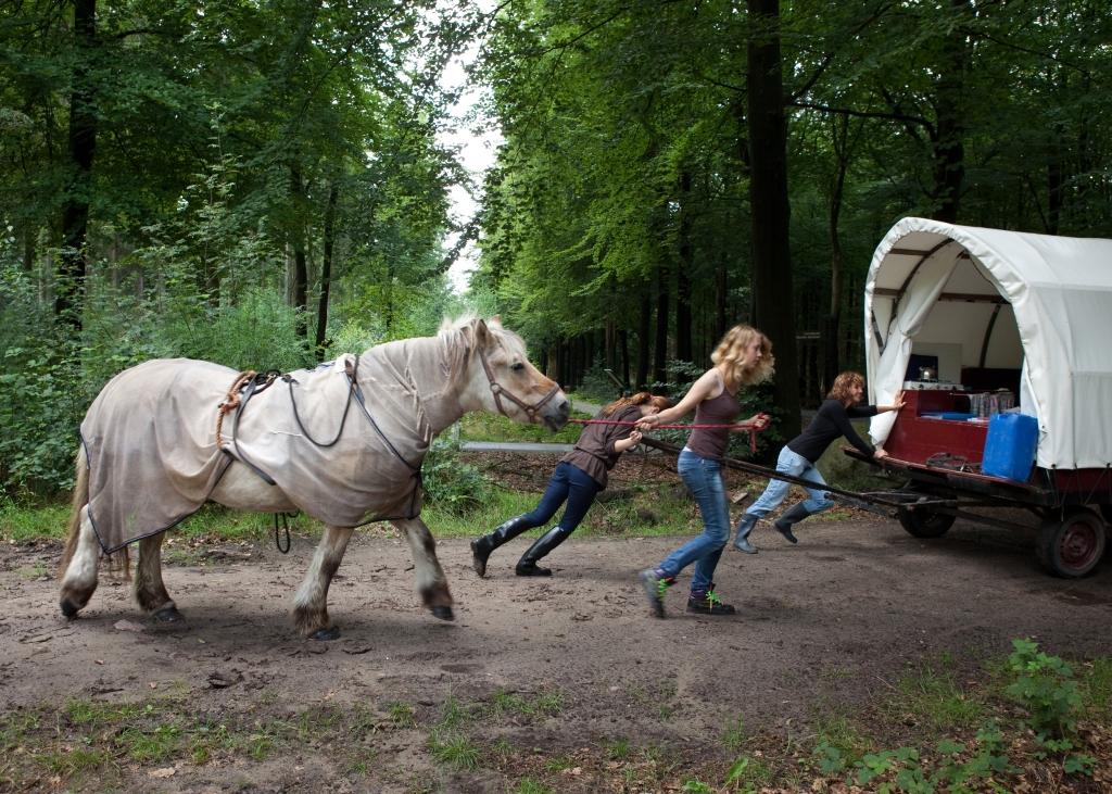 huifkar meisjes trekken paard