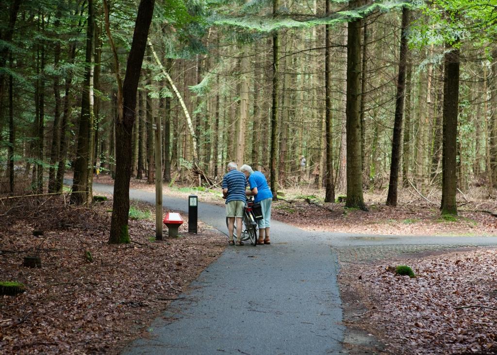 stel op de fiets in bos